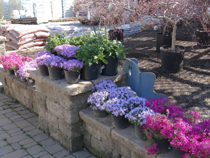photos mendham garden center promotes victory gardens - Mendham Garden Center
