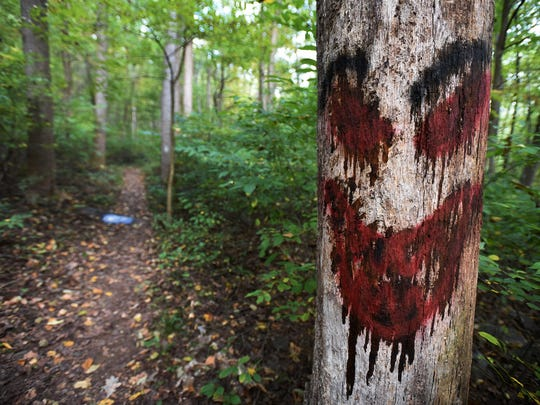 Graffiti on a tree Sunday in Clarence Schock Memorial Park at Governor Dick in West Cornwall on Sunday, Oct. 16.