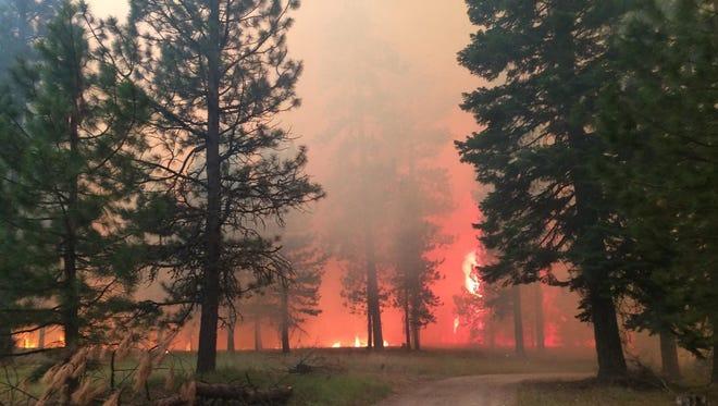 Photo from the Cornet-Windy Ridge Fire in 2015.