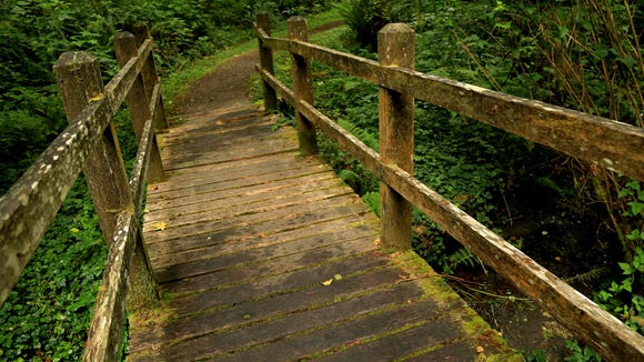 This bridge is located near the trailhead for the Redwood Creek Trail in California's Redwood National Park.