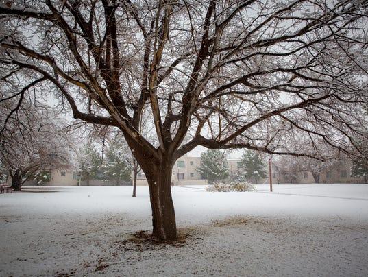 Las Cruces Snow