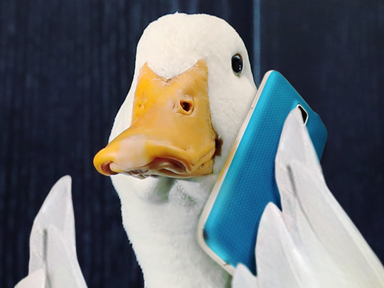 The Aflac duck mascot