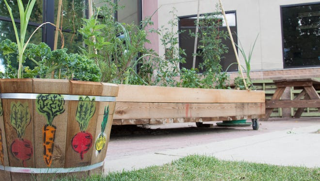 One of The Growing Project's community gardens is at the Sister Mary Alice Murphy Center for Hope.
