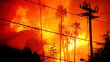 The Thomas Fire became California's largest officially recorded fire on Dec. 22, 2017, when surpassed the 273,000-plus acre Cedar Fire.