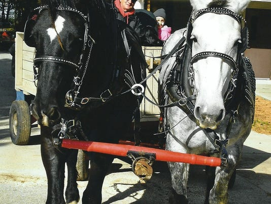 636154175971759294-Ron-Christianson-with-horses0001.jpg