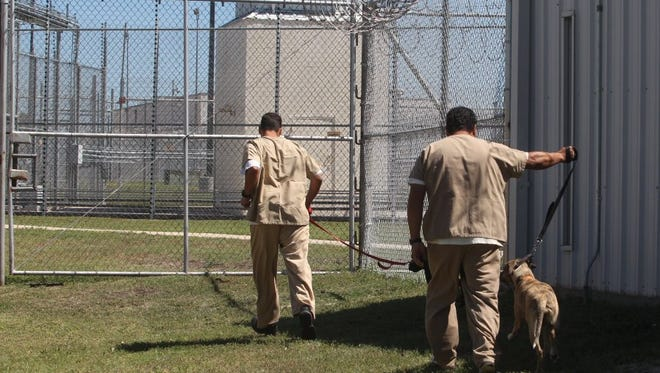 The Eden Detention Center is one of five prisons in Texas that is run by a private company, a practice the U.S. Department of Justice has announced it will end. Inmates at Eden are seen here participating in a program that teamed up homeless dogs with inmates for basic behavioral training.