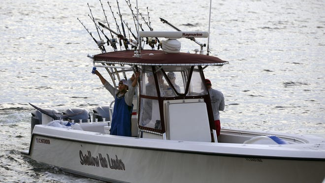 A crew member aboard the Swallow the Leader, celebrates their catch of a Blue Marlin Saturday during the final day of the 44th annual Pensacola International Billfish Tournament