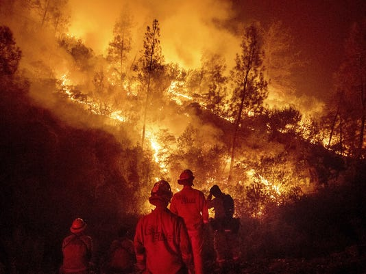 Science Says Wildfire Fuel