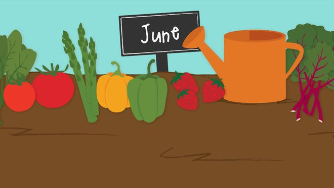 What's fresh at the farmers market in June?