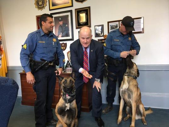MOR 1222 dog badges