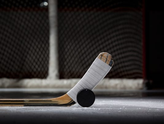 -ice-hockey-stick-puck-net.jpg