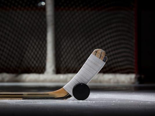 636528704610016867-ice-hockey-stick-puck-net.jpg