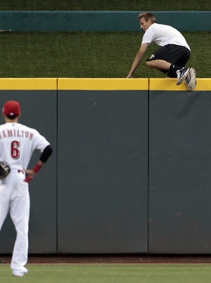 Justin Buchanan climbs the center field wall as he is chased by Cincinnati police.