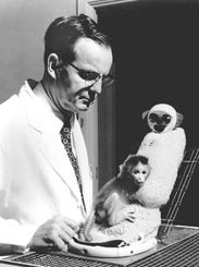 Harry-Harlow-with-baby-monkey-and-surrogate.jpg
