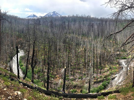 Chush Falls Trail -- riverbend of Whychus Creek with 3 Sisters