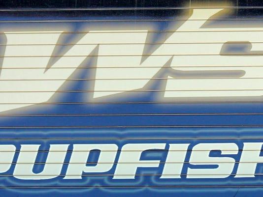 PupfishStock1.jpg