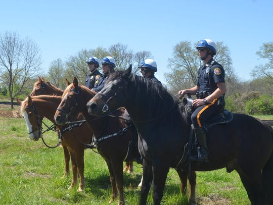 Hendersonville Mounted Patrol and horses (back to front)