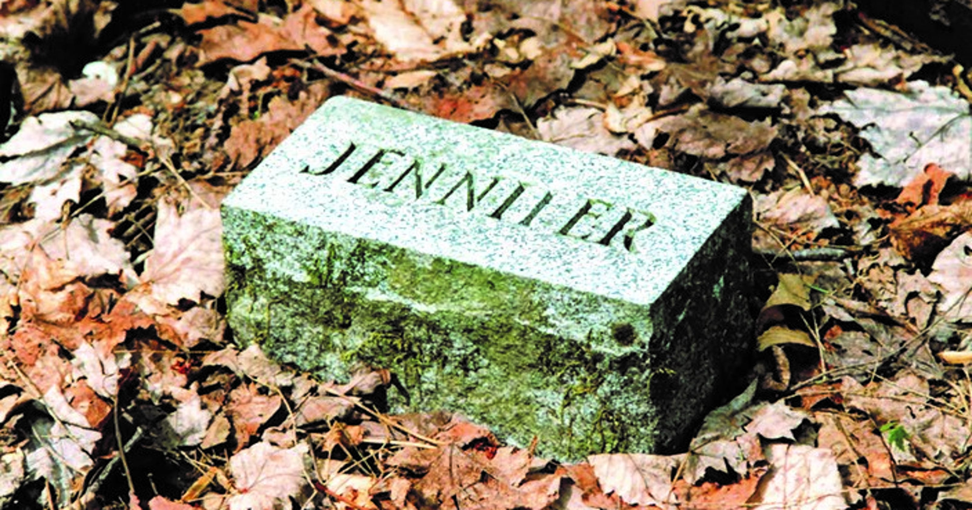 Cemeteries in Smoky Mountains National Park detailed in new book