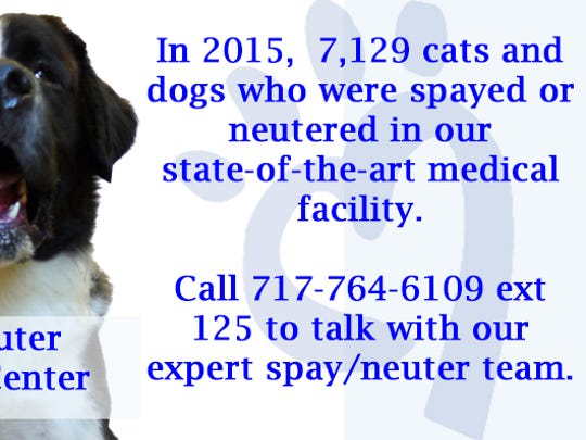 York County SPCA facts