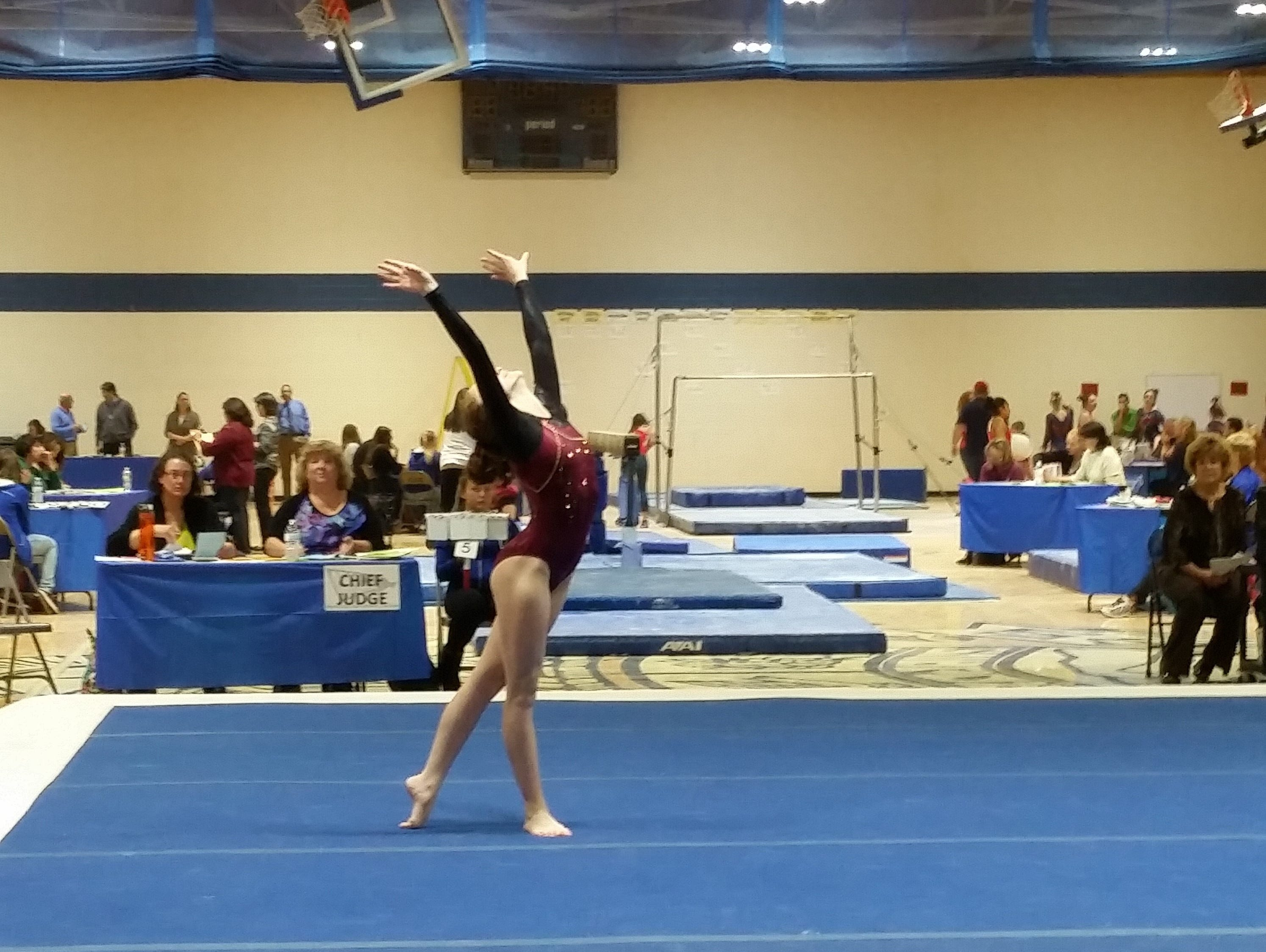 arkansas gymnastics state meet 2015