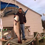 Thomas Srazier caught a striper measuring 54 inches and weighing in at 64.5 pounds.