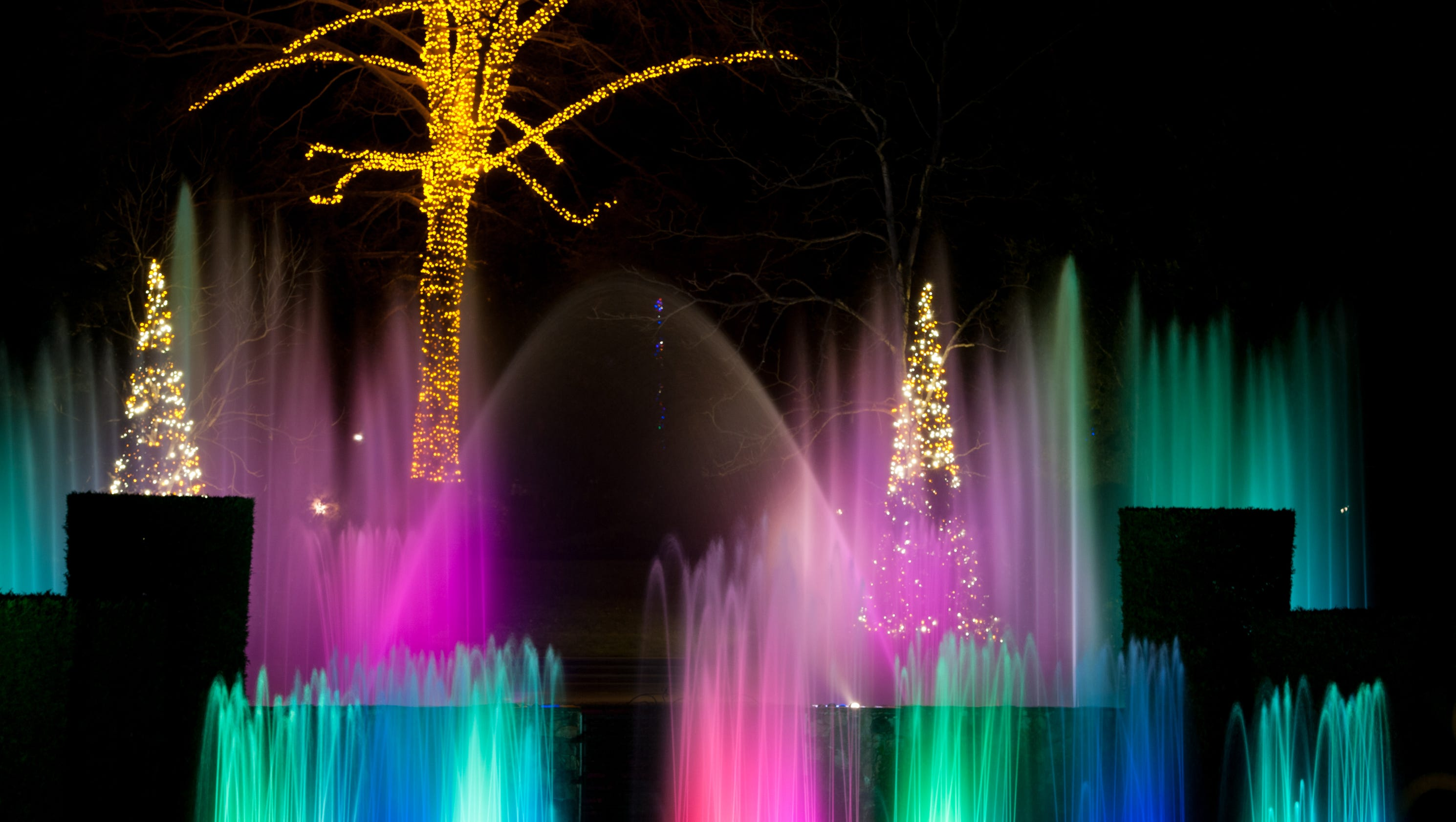 Day 1 win tickets to longwood gardens for Longwood gardens tickets