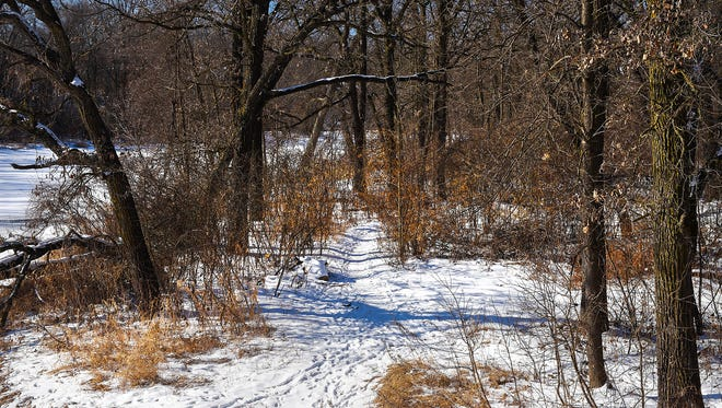 A path is the Sauk River Regional Park winds along the Sauk River, shown Friday, Feb. 9, in Sartell.