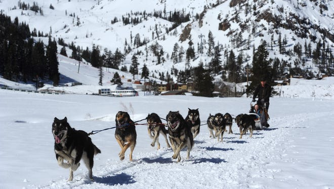 Writer Sarah Litz joins Wilderness Adventures Dog Sled Tours at Squaw Valley in California on March 23, 2017.