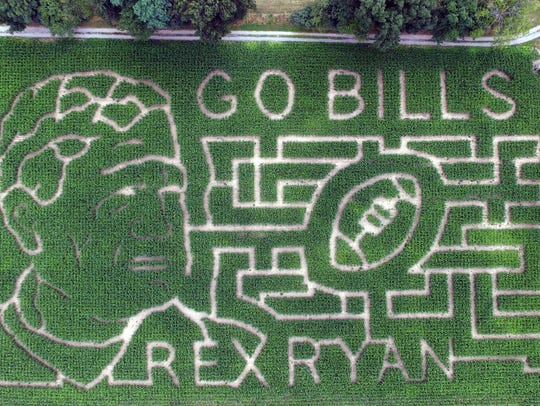 Rex Ryan and the Buffalo Billls