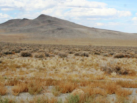 The federal government manages public lands at a financial loss, where Nevada counties must maximize income from public lands. This means selling to private interests, says Tina Nappe.