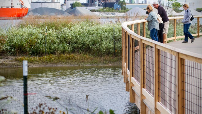 People look from the boardwalk into the water at Wetlands County Park after the ribbon cutting ceremony for the new boardwalk Sept. 27.