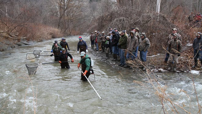 Employees with the DEC shock Naples Creek to check on the trout on March 20.