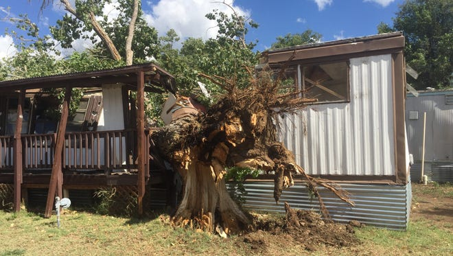 A tree was uprooted early Wednesday morning during a thunderstorm that rolled through Silver City. It then fell on a vacant mobile home in the 1500 block of Gold Street.
