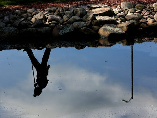 A journalist walks along the pond after documenting