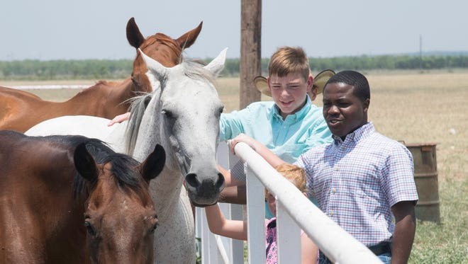 Friendly horses come to the fence for a little attention at the West Texas Boys Ranch. The ranch has been helping boys develop the skills and emotional maturity needed to thrive in adulthood since it was established in 1947.