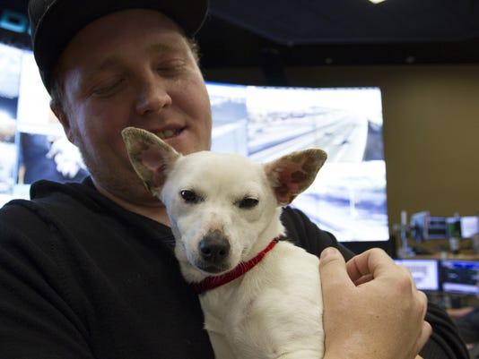 Dottie, the puppy rescued from Phoenix freeway