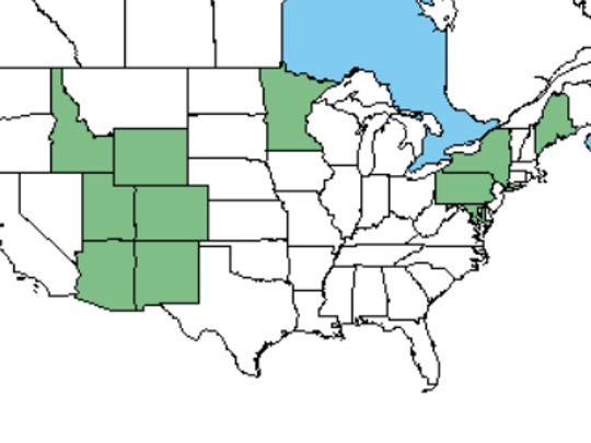 United States Department of Agriculture offers this Plants Data Base current range map for blue spruce.