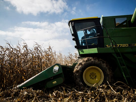 Randolph County farmers joined efforts to harvest Joe