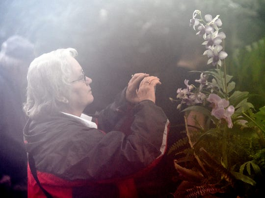 Diana Hunley of Salem, Ky., takes a photo of orchids
