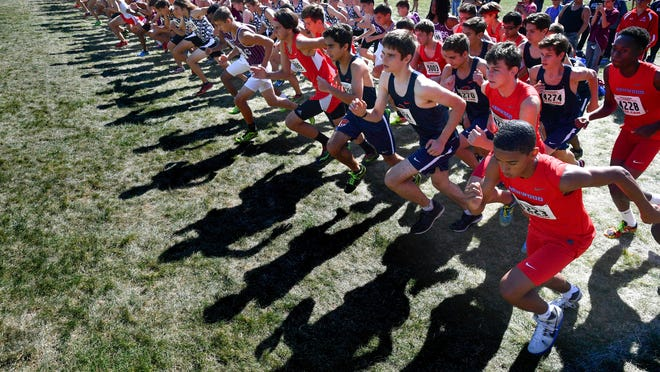 Runners get set to start a race on the venerable cross country course at Detwiller Park in Peoria.