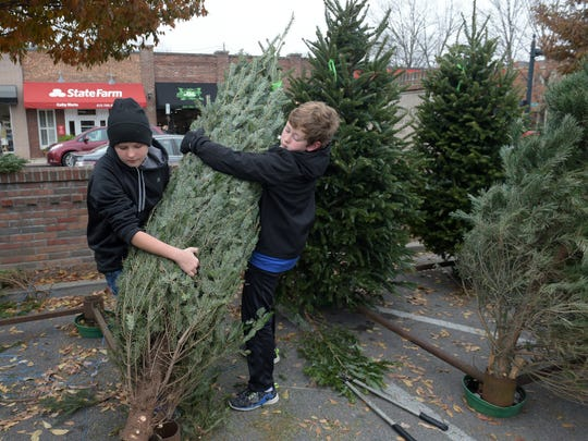 Boy Scouts Troop 137 member John Walker Jr., 12,  and Leonard Hanson,13, prepare trees to be sold at the Boy Scouts' Christmas tree lot in downtown Franklin that  was started by Walker's grandfather, William Walker, in 1982.