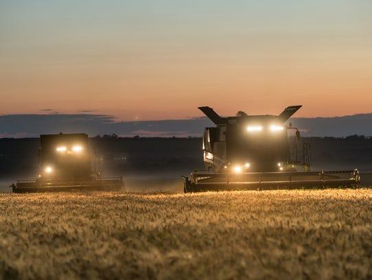 22. Wheat farmingEmployment growth 2007-2016: 54.9%