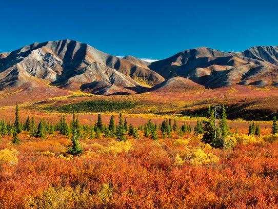 Denali National Park and Preserve: Get a true taste of the Alaskan wilderness at this 6 million-acre national park. Catch a glimpse of wildlife such as moose, caribou and grizzly bears, and marvel at North America's tallest peak — the 20,310-foot-tall Denali.