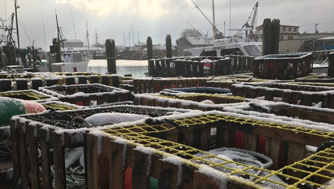 Frost and a dusting of snow sits at the West Ocean City Marina after a morning storm on Monday, Jan. 30.