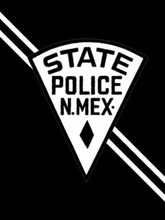 NMSP Logo