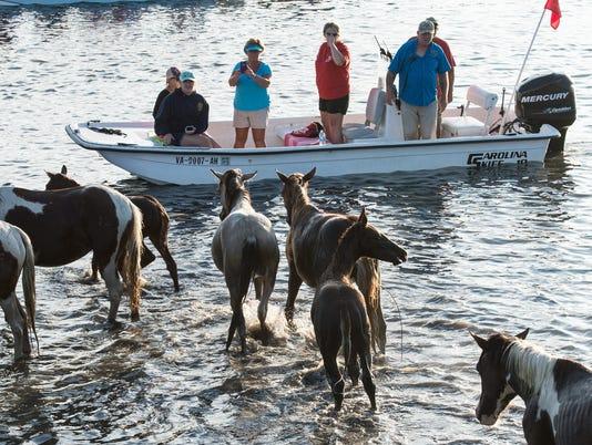 20170726rm-Pony-Swim-29.jpg