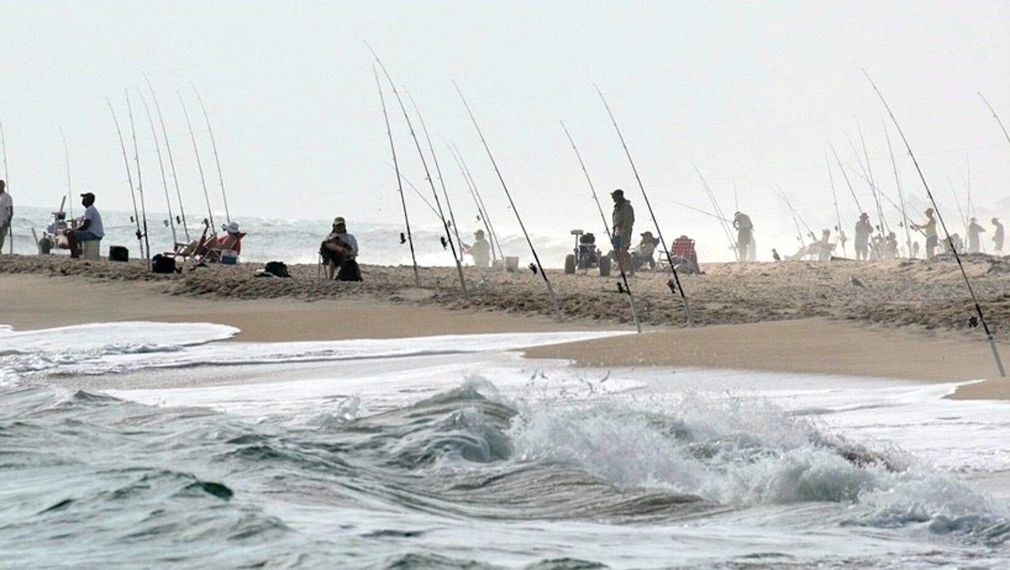 Treasure coast fishing report surf fishing is up for Treasure coast fishing report