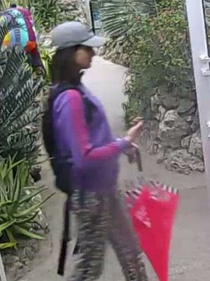 Cincinnati police said this suspect entered the Butterfly Exhibit and stole a rare specimen.
