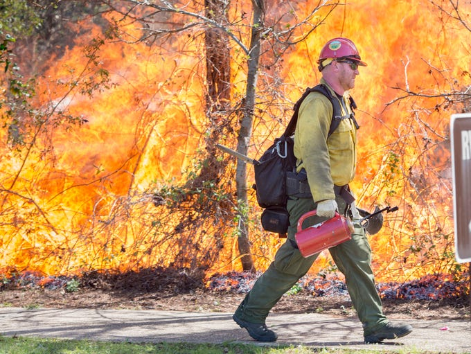 Forestry technician Adam Kunce, from the Conecuh National