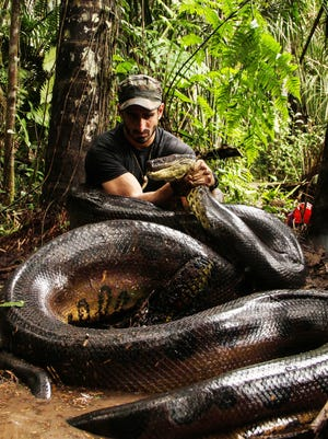 Paul Rosolie let this anaconda try to make a meal out of him.